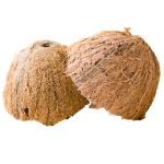 coconut - you have to love them